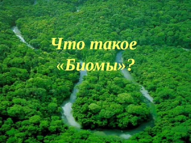 Что  такое « Биомы»?