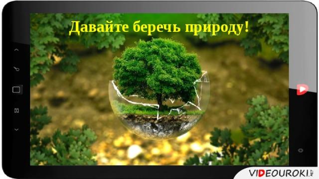 Давайте беречь природу!