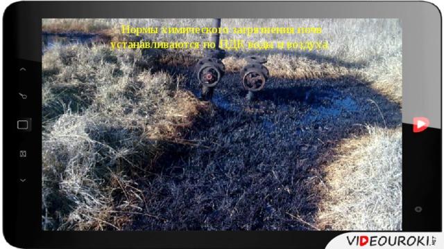 Нормы химического загрязнения почв устанавливаются по ПДК воды и воздуха.