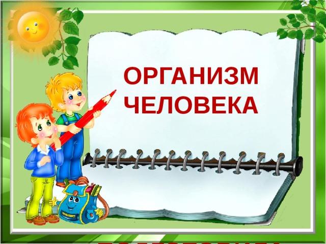 Организм человека    Подготовила ученица 3 «В»  МБОУ «СОШ №12 с уиоп»  Кашуба Дарья