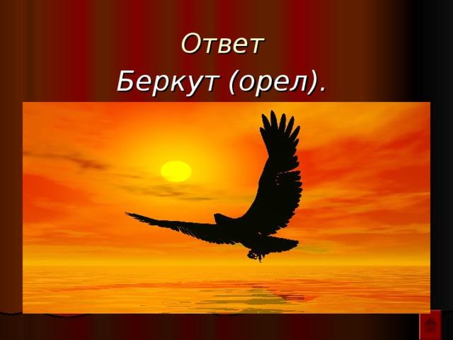 Ответ  Беркут (орел).