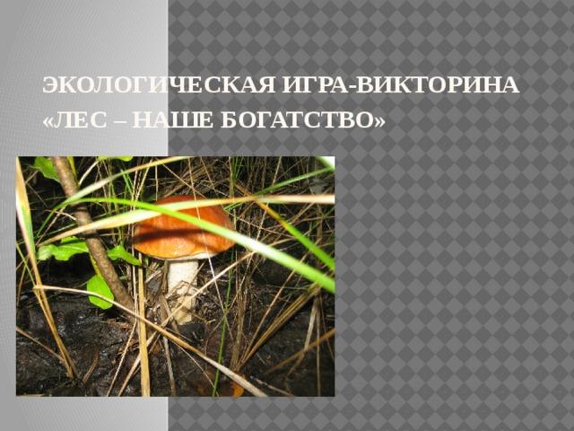 Экологическая игра-викторина «ЛЕС – НАШЕ БОГАТСТВО»