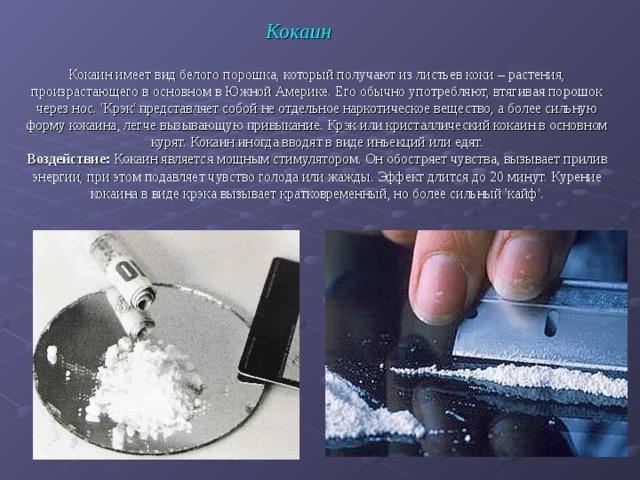 Кокаин Кокаин имеет вид белого порошка, который получают из листьев коки – растения, произрастающего в основном в Южной Америке. Его обычно употребляют, втягивая порошок через нос. 'Крэк' представляет собой не отдельное наркотическое вещество, а более сильную форму кокаина, легче вызывающую привыкание. Крэк или кристаллический кокаин в основном курят. Кокаин иногда вводят в виде инъекций или едят. Воздействие: Кокаин является мощным стимулятором. Он обостряет чувства, вызывает прилив энергии, при этом подавляет чувство голода или жажды. Эффект длится до 20 минут. Курение кокаина в виде крэка вызывает кратковременный, но более сильный 'кайф'.
