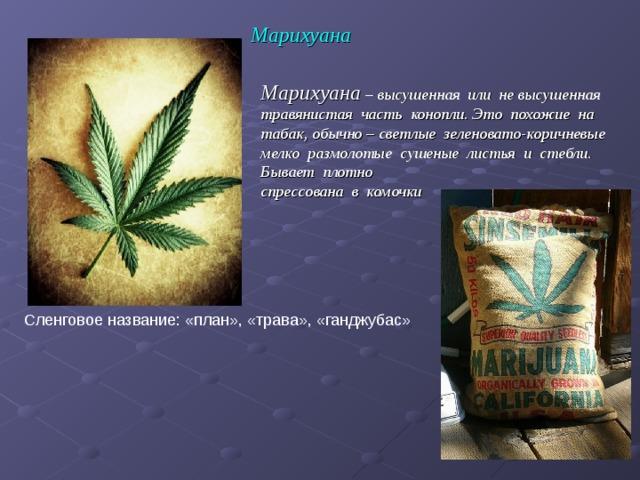 Марихуана Марихуана – высушенная или не высушенная травянистая часть конопли. Это похожие на табак, обычно – светлые зеленовато-коричневые мелко размолотые сушеные листья и стебли. Бывает плотно  спрессована в комочки Сленговое название: «план», «трава», «ганджубас»