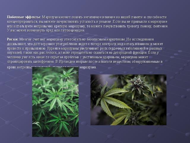 Побочные курение действия марихуаны листья если желтеют у конопли