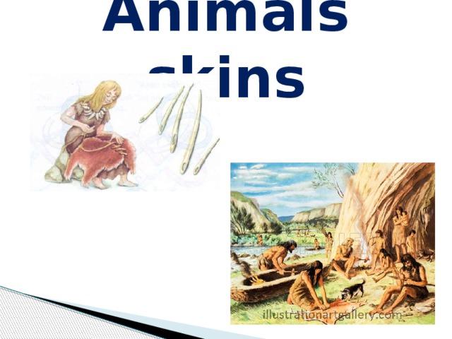 Animals skins