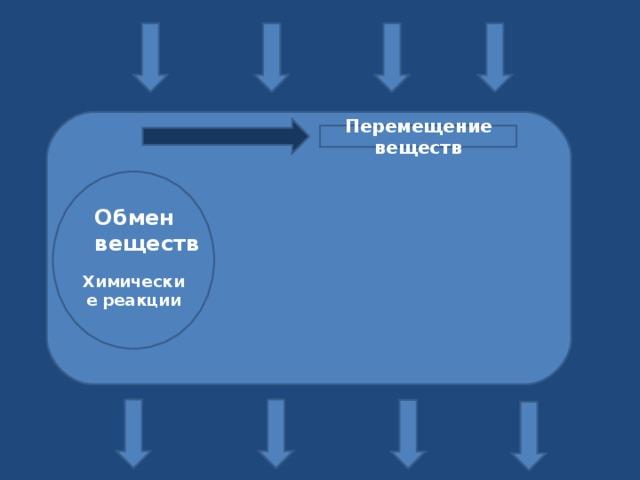 Перемещение веществ     Химические реакции Обмен веществ