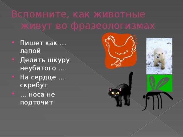 Вспомните, как животные живут во фразеологизмах