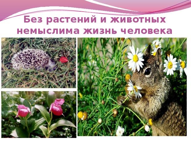 Без растений и животных немыслима жизнь человека