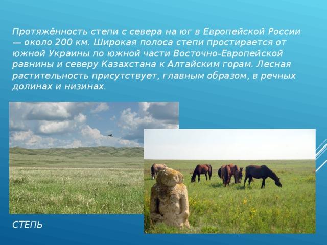 Протяжённость степи с севера на юг в Европейской России — около 200 км. Широкая полоса степи простирается от южной Украины по южной части Восточно-Европейской равнины и северу Казахстана к Алтайским горам. Лесная растительность присутствует, главным образом, в речных долинах и низинах. СТЕПЬ