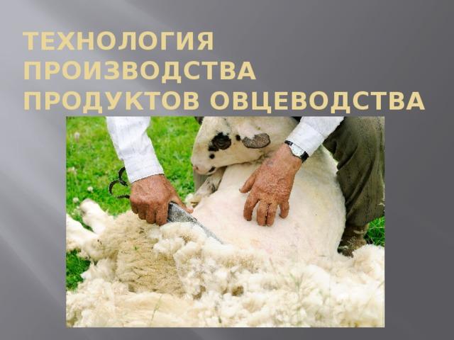 Технология производства продуктов овцеводства
