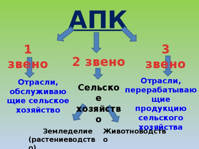 АПК 3 звено 1 звено 2 звено Отрасли, перерабатывающие продукцию сельского хозяйства Отрасли, обслуживаю щие сельское хозяйство Сельское хозяйство  Земледелие Животноводство (растениеводство)