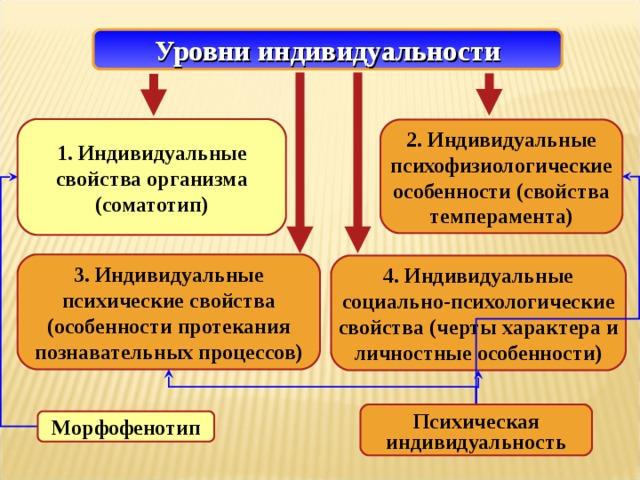 Уровни индивидуальности 1. Индивидуальные свойства организма (соматотип) 2.  Индивидуальные психофизиологические особенности (свойства темперамента) 3.  Индивидуальные психические свойства (особенности протекания познавательных процессов) 4. Индивидуальные социально-психологические свойства (черты характера и личностные особенности) Психическая индивидуальность Морфофенотип