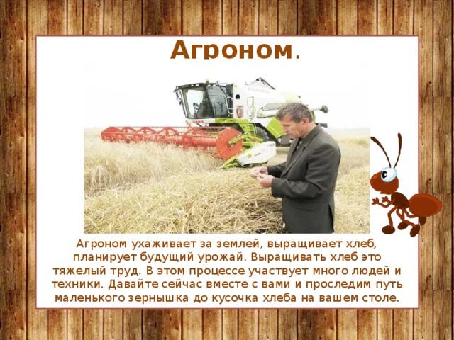 Агроном . Агроном ухаживает за землей, выращивает хлеб, планирует будущий урожай. Выращивать хлеб это тяжелый труд. В этом процессе участвует много людей и техники. Давайте сейчас вместе с вами и проследим путь маленького зернышка до кусочка хлеба на вашем столе.