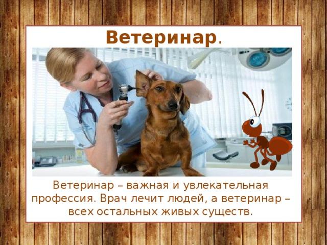 Ветеринар . Ветеринар – важная и увлекательная профессия. Врач лечит людей, а ветеринар – всех остальных живых существ.