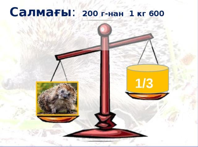 Салмағы : 200 г-нан 1 кг 600 г дейін 1/3