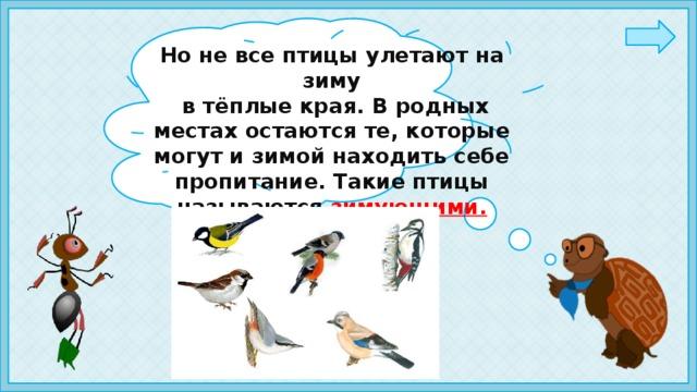 Но не все птицы улетают на зиму  в тёплые края. В родных местах остаются те, которые могут и зимой находить себе пропитание. Такие птицы называются зимующими.