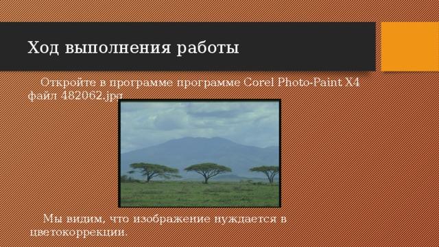 Ход выполнения работы Откройте в программе программе Corel Photo-Paint X4 файл 482062.jpg Мы видим, что изображение нуждается в цветокоррекции.