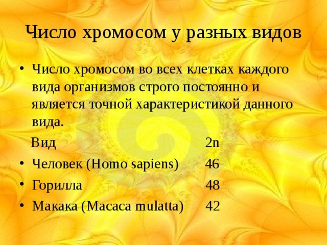 Число хромосом у разных видов Число хромосом во всех клетках каждого вида организмов строго постоянно и является точной характеристикой данного вида.  Вид  2n