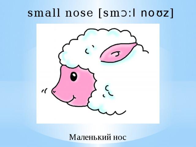 small nose [sm Ɔ :l noʊz ] Маленький нос