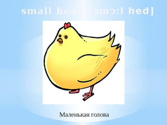 small head [sm Ɔ :l hed ]  Маленькая голова