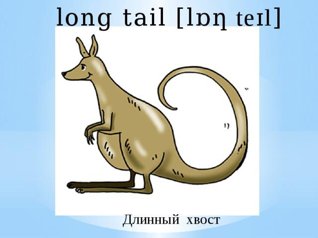 long tail [l ɒƞ teɪl ] Длинный хвост