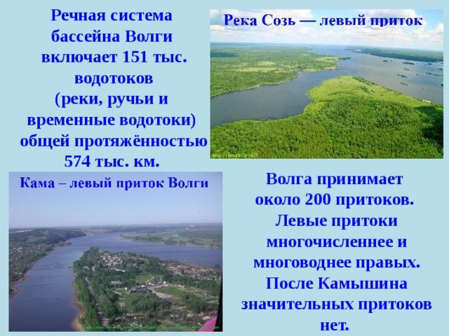 Речная система бассейна Волги включает 151 тыс. водотоков (реки, ручьи и временные водотоки) общей протяжённостью 574 тыс. км. Волга принимает около 200 притоков. Левые притоки многочисленнее и многоводнее правых. После Камышина значительных притоков нет.