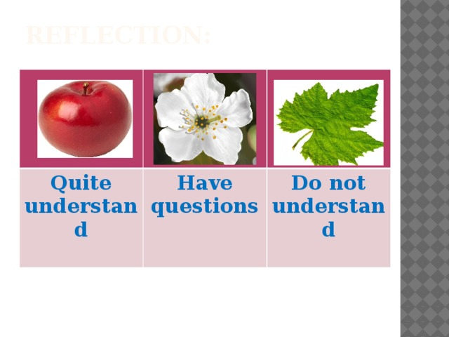 Reflection: Quite understand Have questions Do not understand