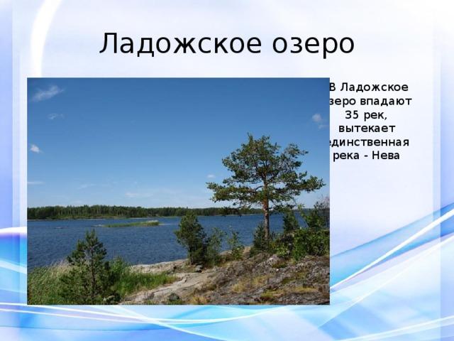Ладожское озеро  В Ладожское озеро впадают 35 рек, вытекает единственная река - Нева