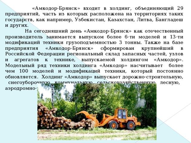 «Амкодор-Брянск» входит в холдинг, объединяющий 29 предприятий, часть из которых расположена на территориях таких государств, как например, Узбекистан, Казахстан, Литва, Бангладеш и других.  На сегодняшний день «Амкодор-Брянск» как отечественный производитель занимается выпуском более 6-ти моделей и 13-ти модификаций техники грузоподъемностью 3 тонны. Также на базе предприятия «Амкодор-Брянск» сформирован крупнейший в Российской Федерации региональный склад запасных частей, узлов и агрегатов к технике, выпускаемой холдингом «Амкодор». Модельный ряд техники холдинга «Амкодор» насчитывает более чем 100 моделей и модификаций техники, который постоянно обновляется. Холдинг «Амкодор» выпускает дорожно-строительную, снегоуборочную, коммунальную, сельскохозяйственную, лесную, аэродромно-уборочную и другую технику.
