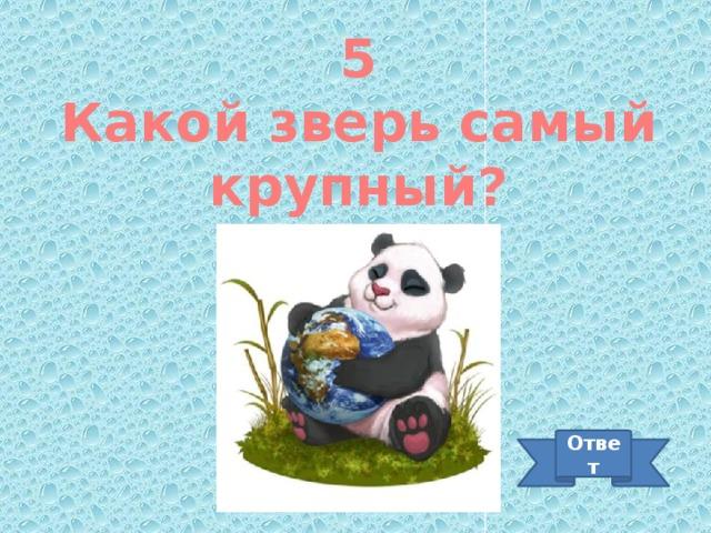 5 Какой зверь самый крупный? Ответ