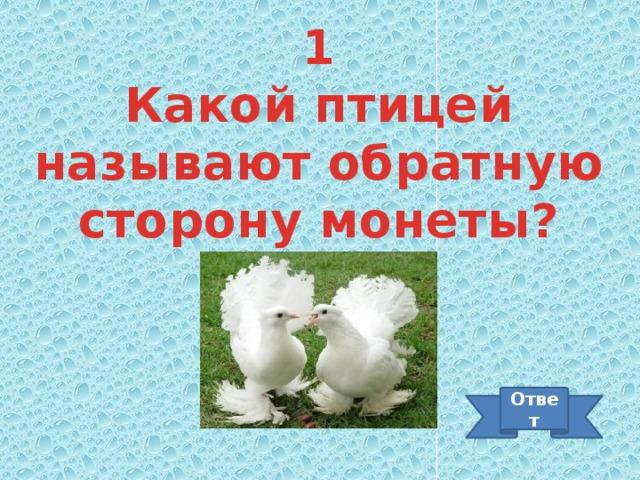 1 Какой птицей называют обратную сторону монеты? Ответ