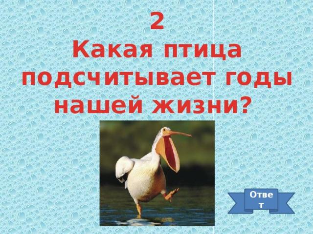 2 Какая птица подсчитывает годы нашей жизни? Ответ