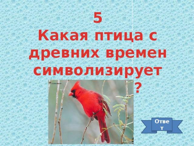 5 Какая птица с древних времен символизирует мудрость? Ответ