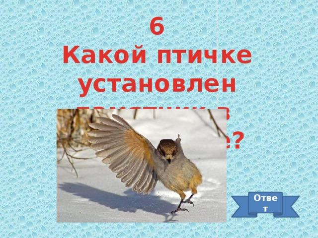 6 Какой птичке установлен памятник в Петербурге? Ответ