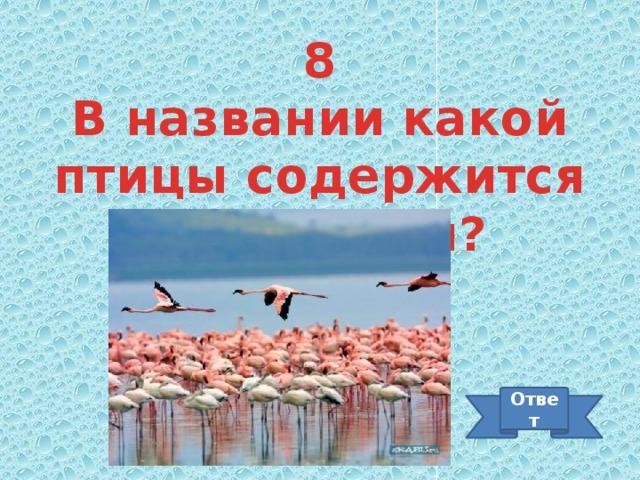 8 В названии какой птицы содержится профессия? Ответ