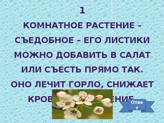 1 Комнатное растение – съедобное – его листики можно добавить в салат или съесть прямо так. Оно лечит горло, снижает кровяное давление. Ответ