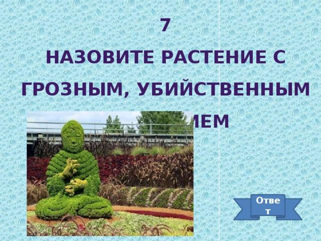 7 Назовите растение с грозным, убийственным названием Ответ