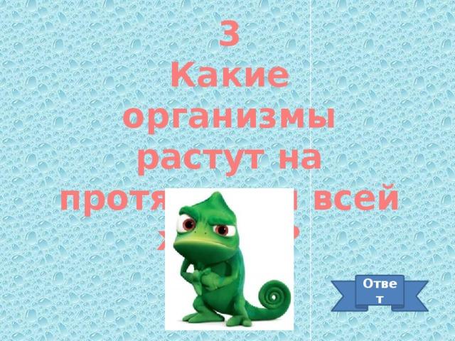 3 Какие организмы растут на протяжении всей жизни? Ответ