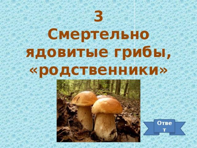 3 Смертельно ядовитые грибы, «родственники» мухомора Ответ