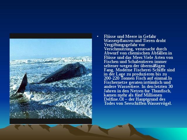 Flüsse und Meere in Gefahr Wasserpflanzen und Tieren droht Vergiftungsgefahr vor Verschmutzung, verursacht durch Abwurf von chemischen Abfällen in Flüsse und das Meer.Viele Arten von Fischen und Schalentieren immer seltener-wegen der übermäßigen Fang. Moderne Fischerei-Schiffe sind in der Lage zu produzieren bis zu 200-220 Tonnen Fisch auf einmal.In Fischernetze geraten irrtümlich und andere Wassertiere. In den letzten 30 Jahren in den Netzen fur Thunfisch, kamen mehr als fünf Millionen Delfine.Öl – der Hauptgrund des Todes von Seeschiffen Wasservögel.