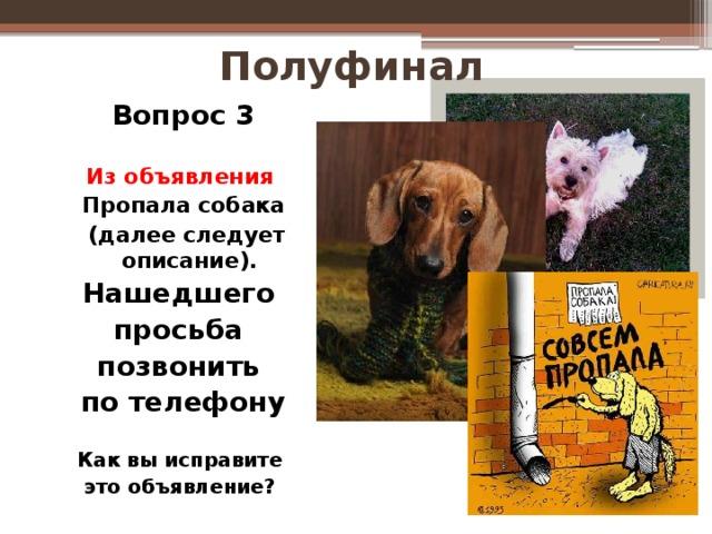 Полуфинал Вопрос 3  Из объявления Пропала собака  (далее следует описание). Нашедшего просьба позвонить по телефону  Как вы исправите это объявление?