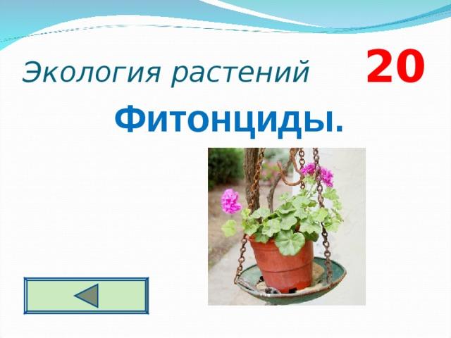 Экология растений 2 0 Фитонциды.