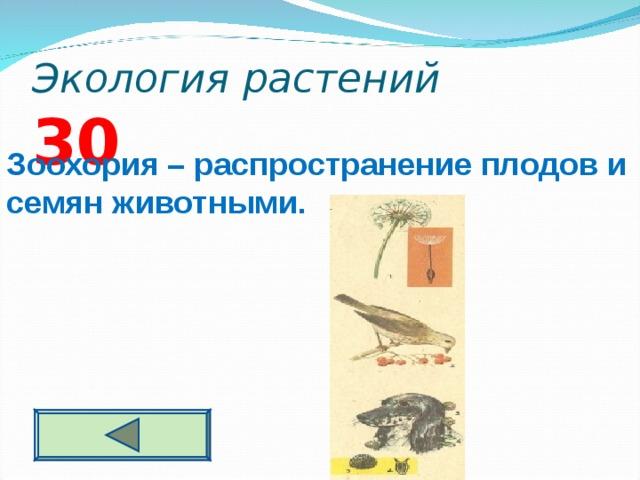 Экология растений 3 0 Зоохория – распространение плодов и семян животными.