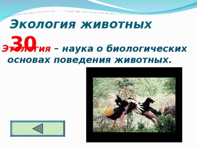 Экология животных  3 0 Этология – наука о биологических основах поведения животных.
