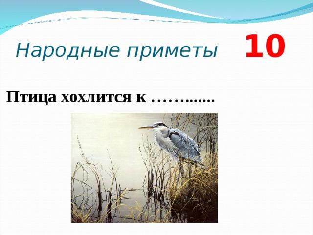 Народные приметы 10 Птица хохлится к …….......