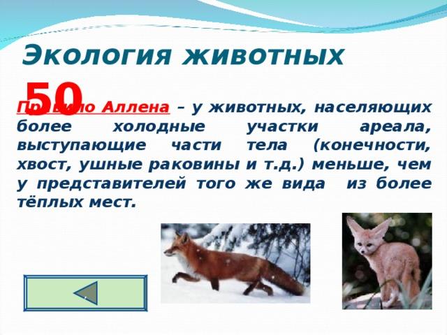 Экология животных  5 0  Правило Аллена – у животных, населяющих более холодные участки ареала, выступающие части тела (конечности, хвост, ушные раковины и т.д.) меньше, чем у представителей того же вида из более тёплых мест. ,
