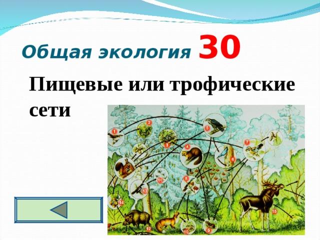 Общая экология  3 0  Пищевые или трофические сети