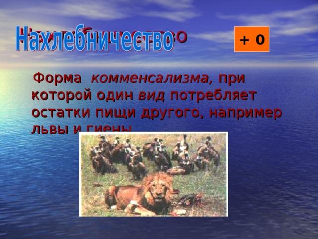 Нахлебничество + 0  Форма комменсализма, при которой один вид потребляет остатки пищи другого, например львы и гиены.