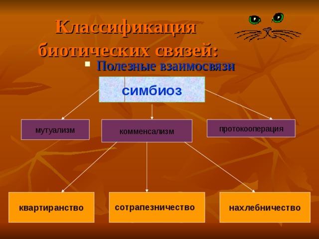Классификация биотических связей: Полезные взаимосвязи  симбиоз комменсализм протокооперация мутуализм нахлебничество квартиранство сотрапезничество